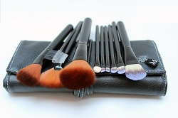 Travel Make up Brush Set